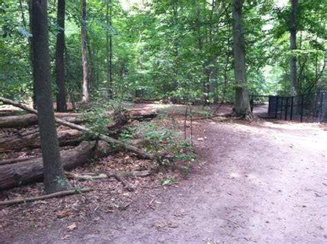 timber creek park timber creek park 39 photos parks gloucester township nj reviews yelp