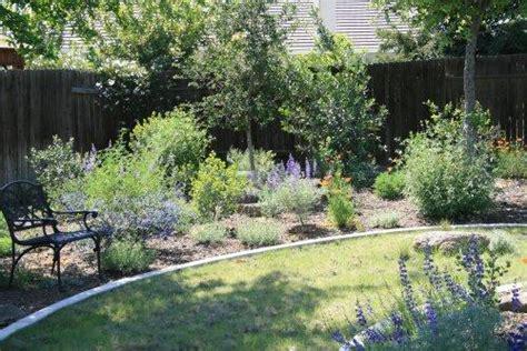 Garden Pathways Bakersfield by Lupines Buffalo Grass Poppies In A Bakersfield