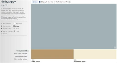 nimbus gray benjamin color inspiration