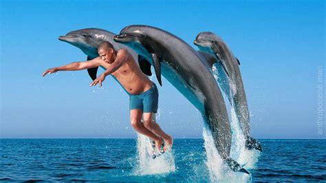 Jay Z Diving Memes - dolphin edition jay z diving know your meme