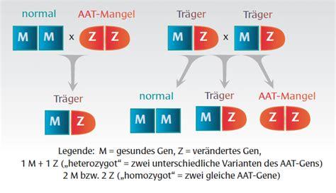 protein z mangel alpha 1 antitrypsinmangel bin ich gef 228 hrdet