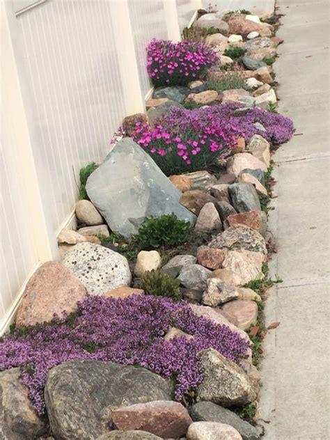 rock garden flowers 20 beautiful rock garden design ideas shelterness
