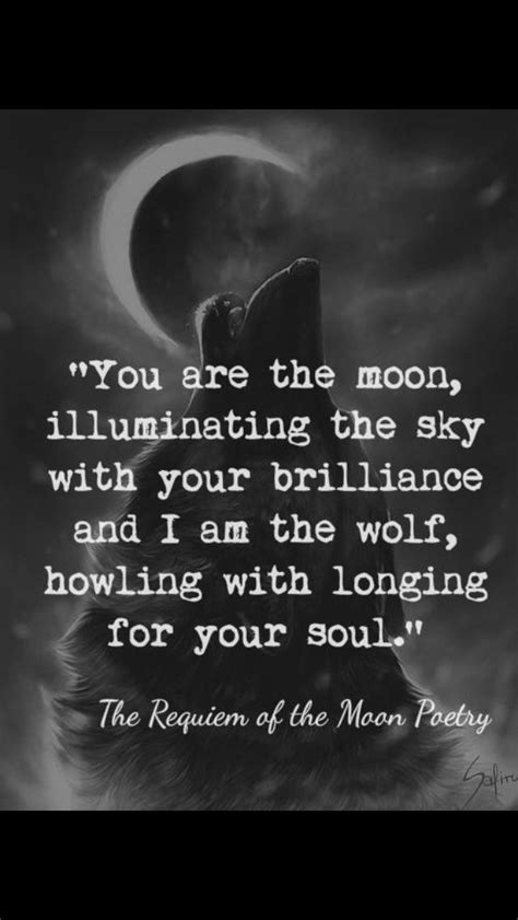 Quotes about Howl at the moon (20 quotes)
