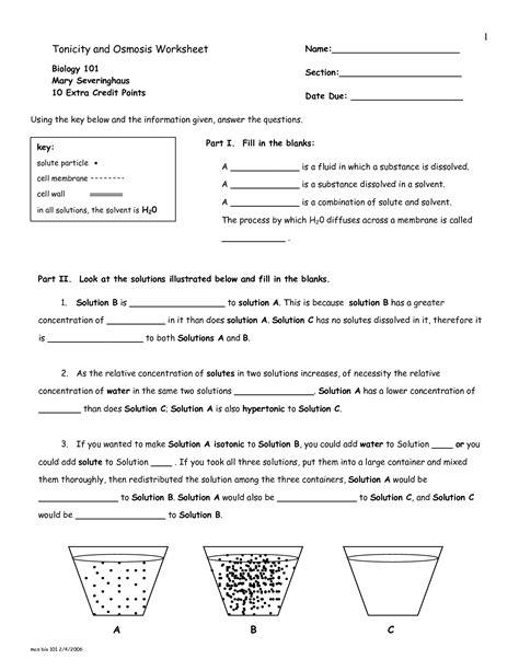 tonicity  osmosis worksheet answers sanfranciscolife