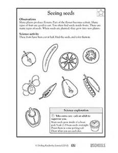 1st grade 2nd grade kindergarten science worksheets all