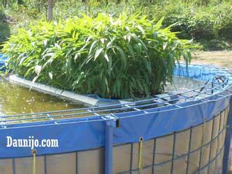 cara membuat hidroponik rakit apung cara membuat akuaponik kangkung rakit apung dari pipa