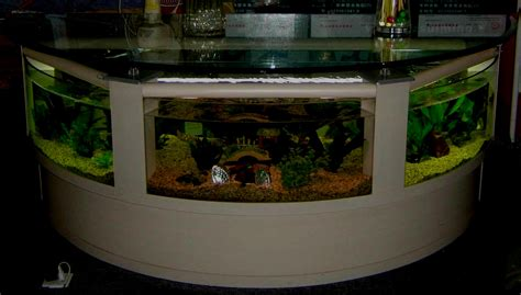 fish tank decoration ideas an excellent home design