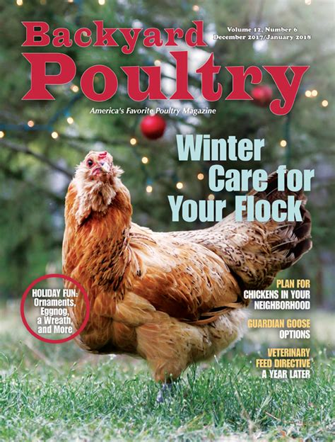 backyard poultry magazine backyard poultry magazine countryside network