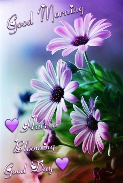 imagenes hermosas de good morning good morning have a blooming good day pictures photos