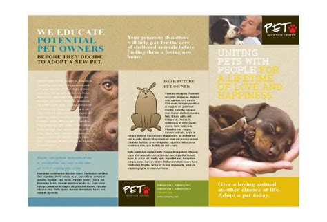 Donor Impact Report Template 1000 Images About Werk On Ad Design Animal