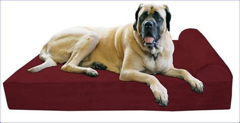 dog beds for great danes big dog beds for great danes dog pet photos gallerygjlpvr