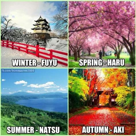 names of the seasons in japanese all things japan pinterest u want summer and swimming