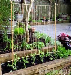how to make garden trellis