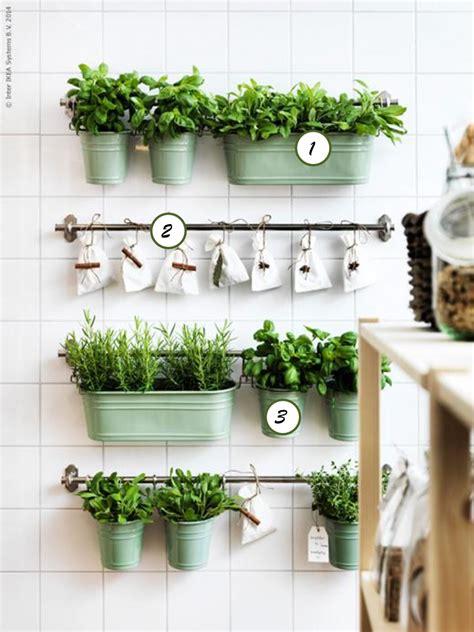 wall herb garden ikea ochprojekt 12 pomysl 243 w na ro蝗liny w kuchni