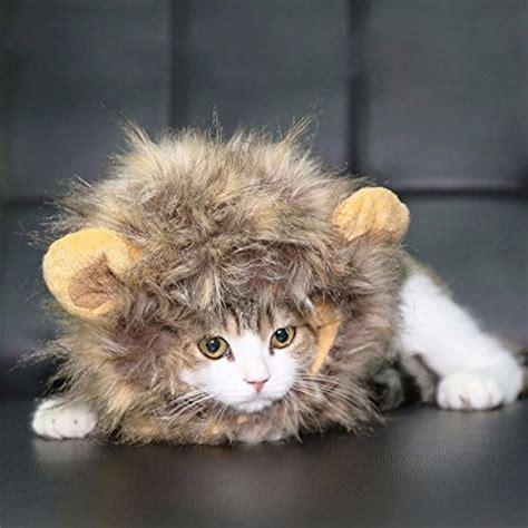 Mainan Kucing Cat It Senses Catit Desain Senses Scratch Pad products archive cats in hats