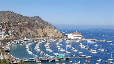 boats to catalina from newport beach catalina island balboa islandbalboa island