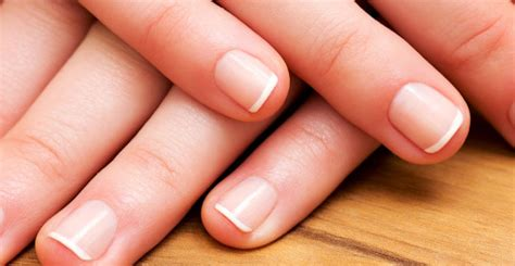 Finger Nail by Surescreen Labs Fingernail Testing Surescreen Labs