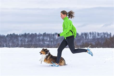 running with dogs cold weather for running with your chicago athlete magazine