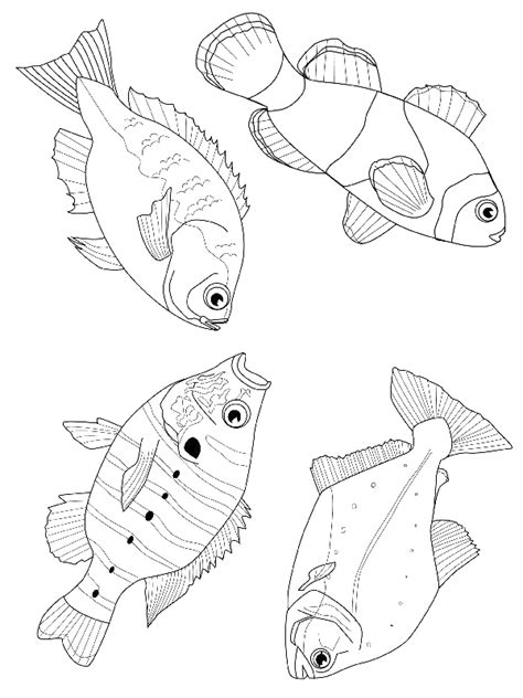 free baby fish coloring pages