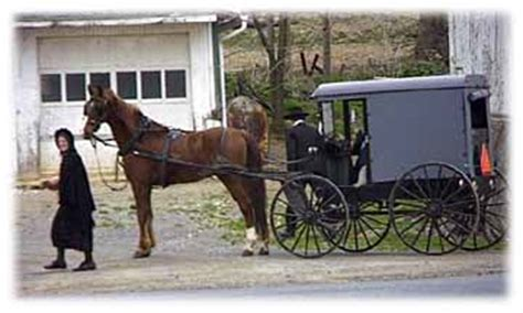 the bishop s an amish the amish of bee county books amish religion