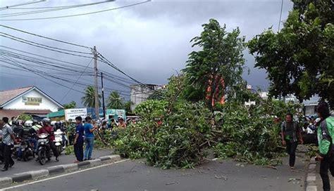 angin kencang tiga pohon tumbang  jakarta selatan