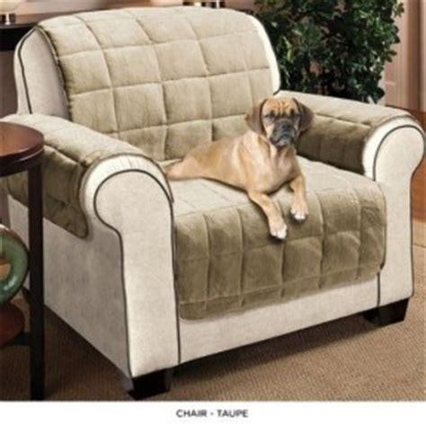cat scratch proof couch cat scratch resistant sofa cover foto bugil bokep 2017