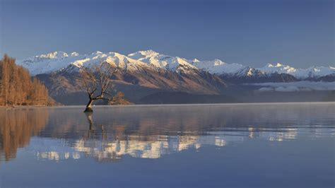 What Are Studio Apartments by Edgewater 187 Accommodation Wanaka Nz Lake Front Property