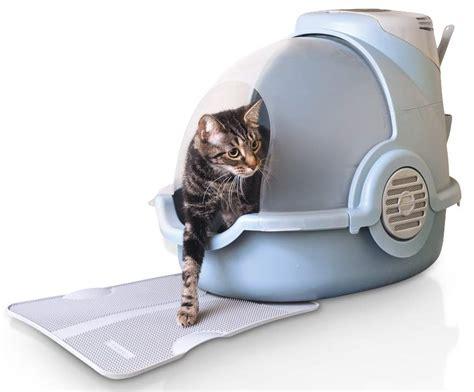 katzenklo klein welches katzenklo braucht ihr haustiger tier tv