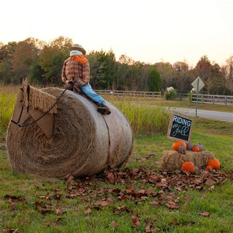 Where To Buy Hay Bales For Decoration by Hay Bale Decorating 2014 The Lettered Cottage