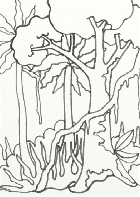 jungle landscape coloring pages wild treasures amazon coloring pages