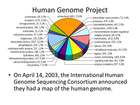 The Genome dna sequencing bioinformatics and microarrays ppt