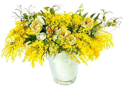 fiori di acciaio fiori d acciaio dedicato a tutte le donne g