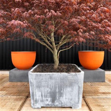 lade terracotta pot axel jardinchic