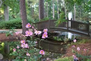 Botanical Gardens In Norfolk Va Norfolk Botanical Gardens Norfolk Va Hton Roads Virginia Pin