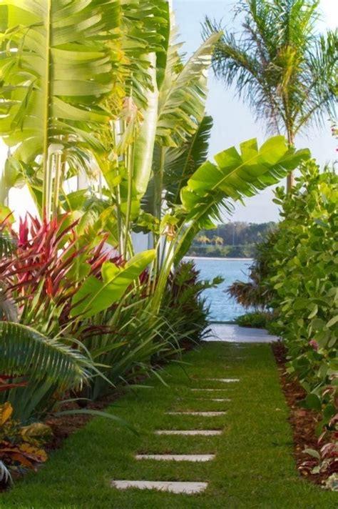 tropical backyard gardens dirtbin designs tropical gardens i love
