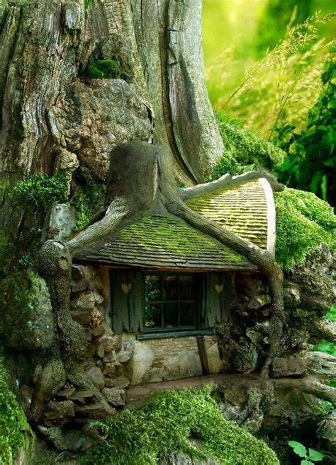 Rent A Treehouse Uk - 3 tree house looking for rainbows in the moonlight garden home amp party
