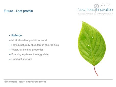 protein 02 beyond water food proteins today tomorrow and beyond