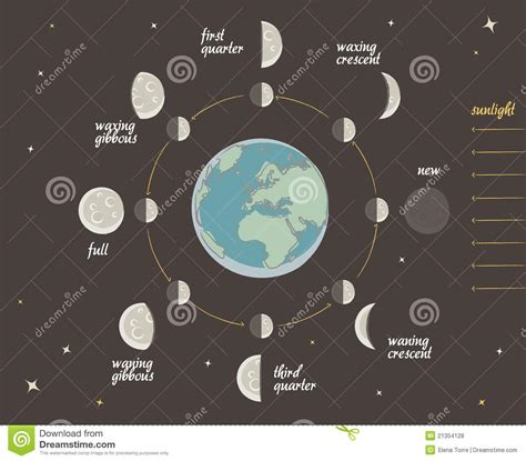 Kitchen Settings Design astronomy lesson moon phases vector royalty free stock