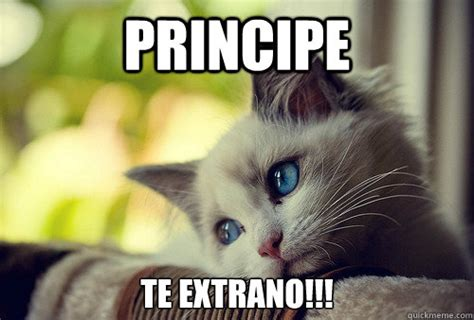imagenes te extraño mi principe principe te extrano first world problems cat quickmeme