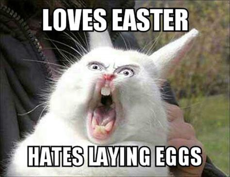 Easter Egg Meme - easter 2017 best funny memes heavy com page 6