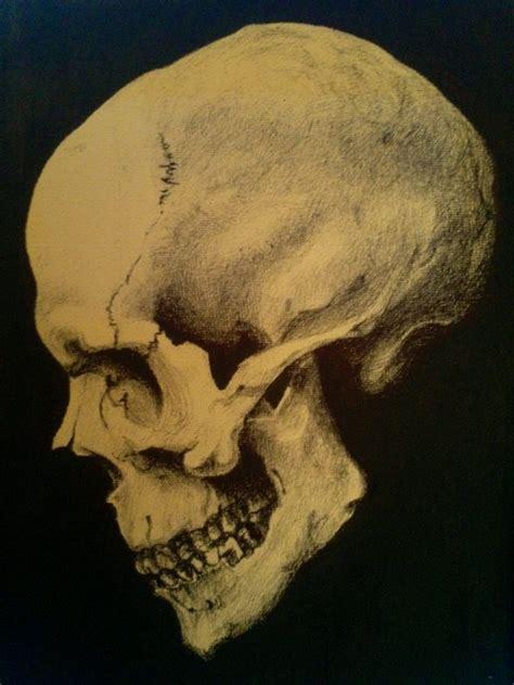 ilustraci 243 n craneo de perfil calaveras pinterest