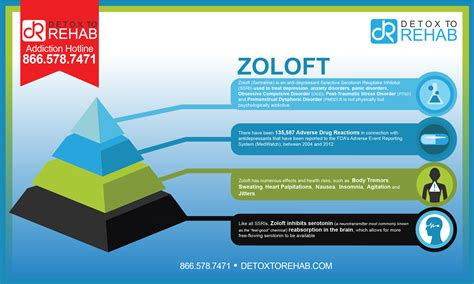 How To Detox From Zoloft by Zoloft Infographic Detox To Rehab