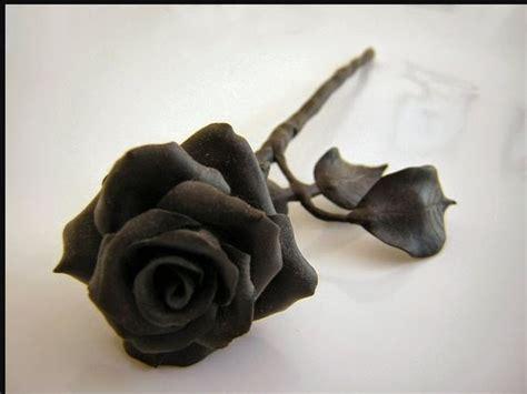 gambar bunga mawar hitam cantik  gambar pedia