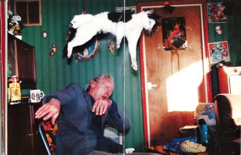 richard billingham rays top 10 cats pictured in famous art