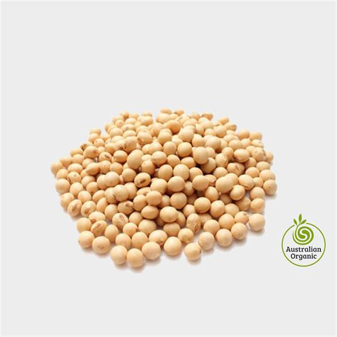 Soya Bean 1 organic soybean seeds for sale