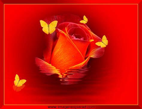 aqu las ms hermosas imgenes de gifs de flores con frases postales de paisajes gif con movimiento paisajes kawaii