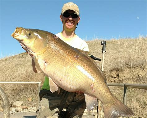 State Of Dakota Records New State Buffalo Record Set By N D Bow Fisherman Fish