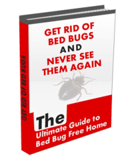 bed bug remedies 187 get rid of bed bugs and never see them