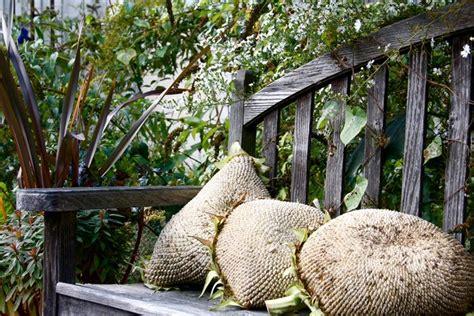 cuscini giardino cuscini da giardino complementi arredo per esterni
