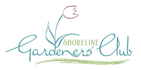 shoreline area news gardeners  shoreline